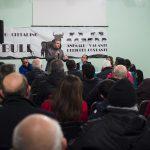 no bull, Cittanova, Piana di Gioia Tauro, vacche sacre, bovini vaganti, ndrangheta, manifestazione